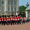 Buckingham Guards
